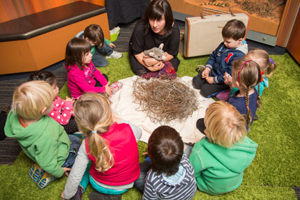 SA Museum - Young Explorers Program